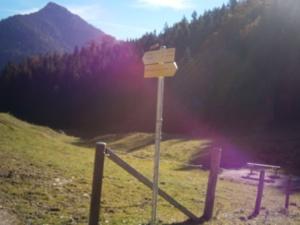 Bild Schwarzrieshuette Überquerung des Weidezauns