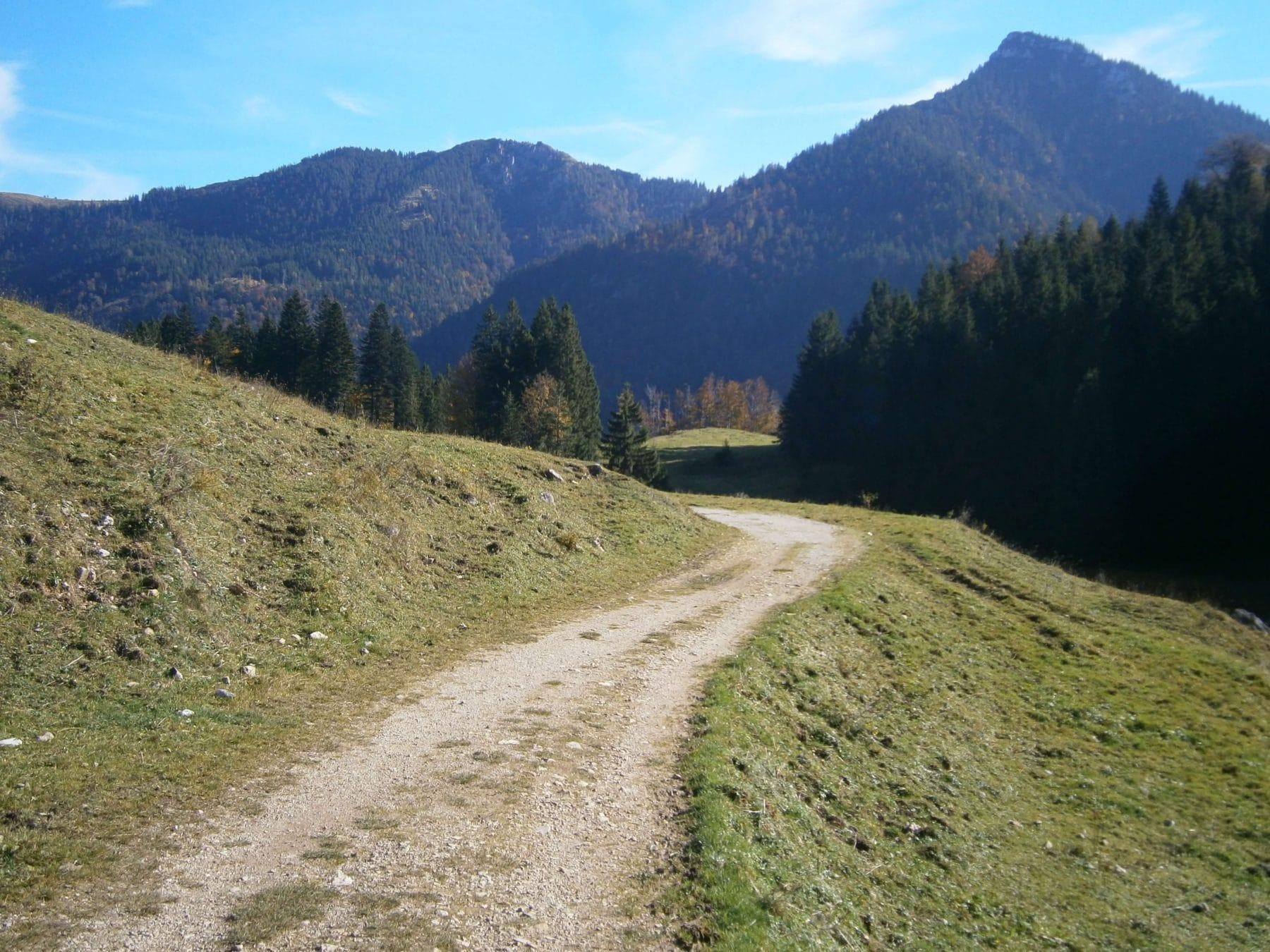 samerberg-schwarzrieshuette-21-almweg