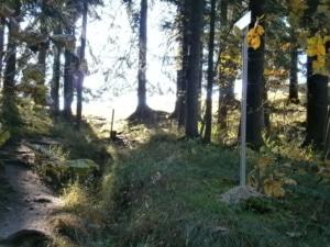 Bild schwarzrieshuette Schilder Abkuerzung sonniger Lichteinfall