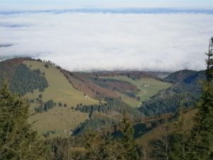 Bild Kampenwand Blick mit Nebel