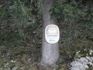 Bild Kampenwand Schild Moeslarnalm