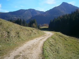 Bild Almweg zur Schwarzrieshuette
