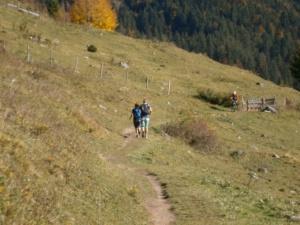 Bild Wanderweg kurz vor der Schwarzrieshuette