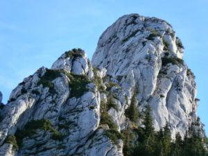 Bild Kampenwand Kletterer